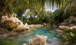 Ý tưởng thiết kế hồ bơi bằng đá tự nhiên